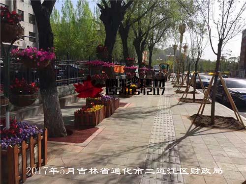 2017年5月吉林省通化市二道江区财政局